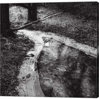 Pool' Metaverse The Ice Pool by Harold Silverman Canvas Art