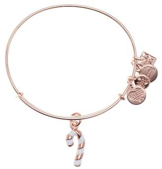 Alex and Ani Candy Candy Charm Bracelet