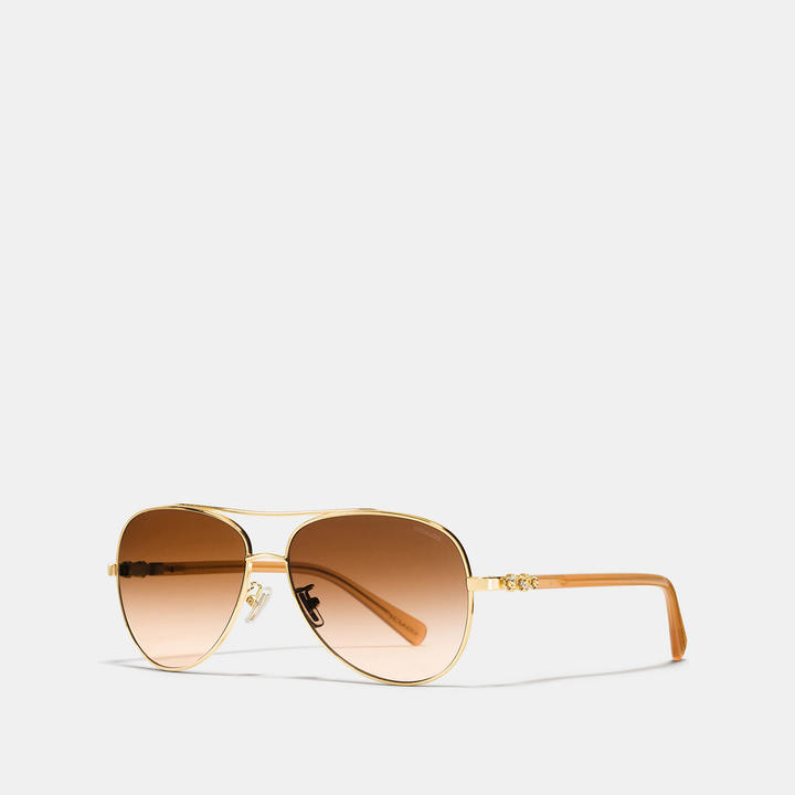 Coach  COACH Coach Daisy Rivet Pilot Sunglasses