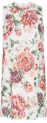 Dolce & Gabbana Peony-Print Lace Shift Dress