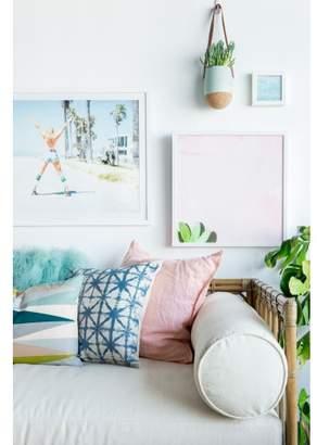 Lulu & Georgia Carley's Camera Cactus on Pink Wall Photography Print
