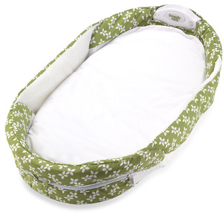 Bed Bath & Beyond Baby Delight® Snuggle Nest® Surround Portable Infant Sleeper - Green/White