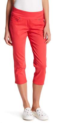 Jag Peri Straight Leg Cropped Jeans (Petite)