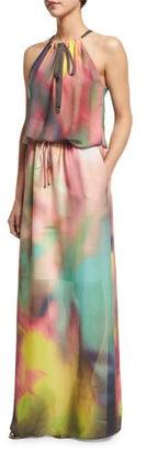 Elie Tahari York Sleeveless Watercolor Maxi Dress, Multi Colors $498 thestylecure.com