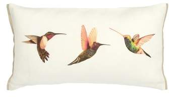 Amazilia Accent Pillow