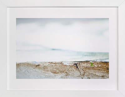 Sea Series 1 Art Print