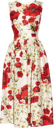 DOLCE & GABBANA Poppy-print cotton and silk-blend dress $2,192 thestylecure.com