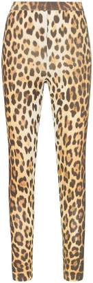Moschino leopard print high-waisted leggings