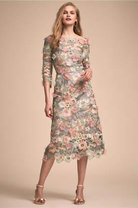 Marchesa Hollis Dress