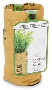 Cilantro Organic Grow Kit