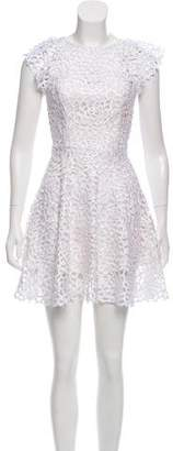 Alexis Lace Embroidered Mini Dress