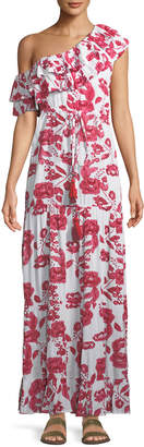 Neiman Marcus Lovers And Friends Amity One-Shoulder Floral-Print Maxi Dress