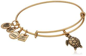 Alex and Ani Charity By Design Turtle Bangle Bracelet