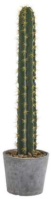 "Bungalow Rose 41"" Cactus Moss Plant in Stone Planter"