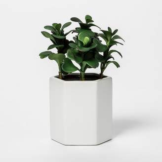 Project 62 Faux Jade Plant in White Pot