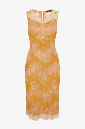 WallisWallis Ochre Lace Shift Dress