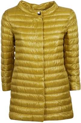 Herno Funnel-neck Padded Jacket