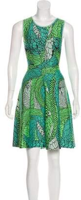 Issa Patterned A-Line Dress