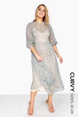 40fa04cd699 Little Mistress Midi Dresses - ShopStyle UK