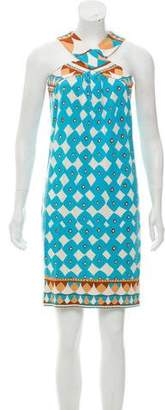 Diane von Furstenberg Banner Silk Dress