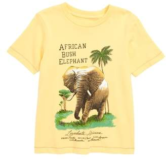 Peek Elephant Graphic T-Shirt