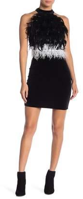 Gracia Velvet Faux Feather Dress