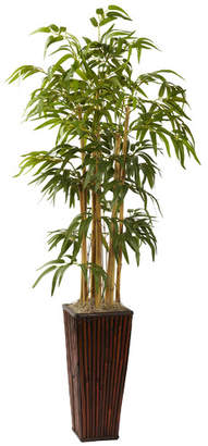 World Menagerie Bamboo Tree in Planter