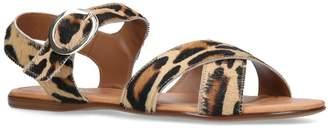Kurt Geiger London Haircalf Leopard Dahlia Sandals