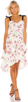 Parker Panama Combo Dress