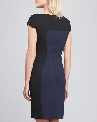 Elie Tahari Dixie Two-Tone Sheath Dress