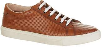 Eleventy Perforated Leather Sneakers