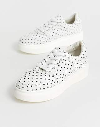 Blink lace up sneakers