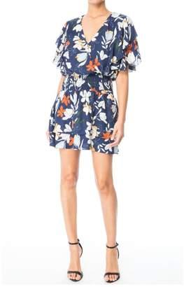 Parker Talbot Dress