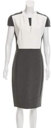 Narciso Rodriguez Colorblock Cap Sleeve Dress