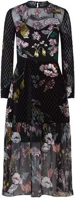 Markus Lupfer Embroidered Velvet Sheer Midi Dress