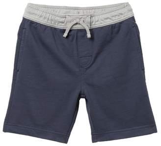 Tea Collection Boardies Surf Shorts (Toddler, Little Boys, & Big Boys)