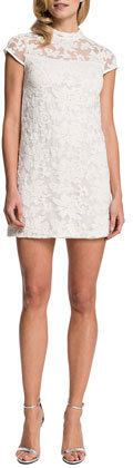 Cynthia Steffe Eisele Cap-Sleeve Embroidered Organza Dress