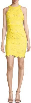 Missguided Halterneck Lace Mini Dress