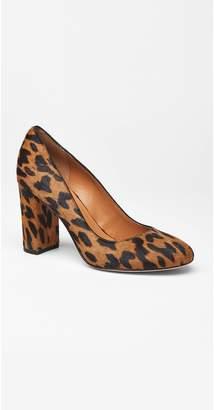 J.Mclaughlin Mila Pumps in Leopard