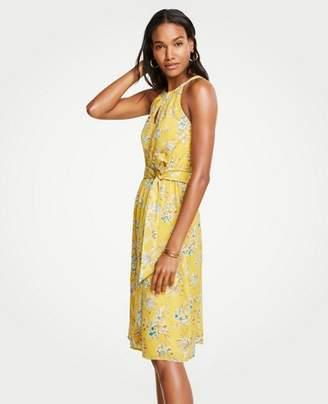 Ann Taylor Tropical Toile Halter Tie Waist Flare Dress