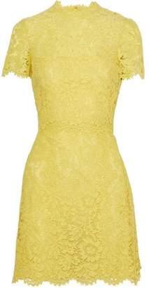 Valentino Scalloped Cotton-Blend Corded Lace Mini Dress