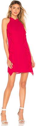 Krisa Turtleneck Ruffle Mini Dress