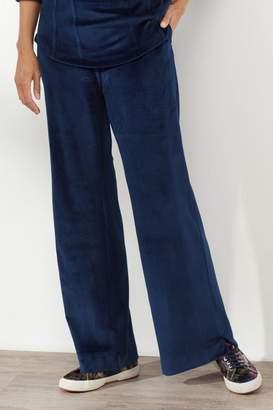 Soft Surroundings Velour Pull On Pants
