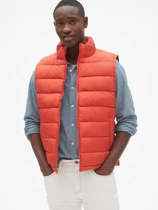 Winter Warm Puffer Vest