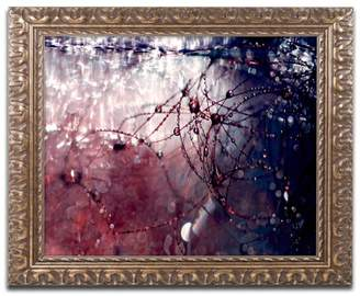 Trademark Fine Art Beata Czyzowska Young 'Galaxy Far Away' Ornate Framed Art