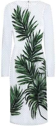 Dolce & Gabbana Appliqued Net Midi Dress