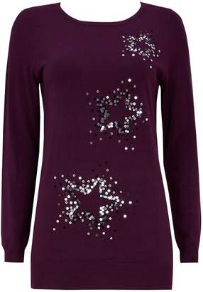 Wallis Berry Star Sequin Tunic Jumper