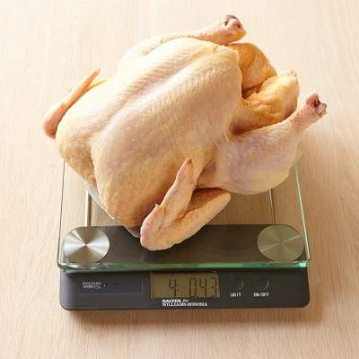 Williams Sonoma Touchless Tare High-Capacity Glass Scale