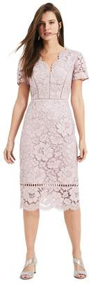 Phase Eight Womens Pink Trinity Corded Lace Dress - Pink