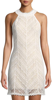 Lost + Wander Champagne Lace Halter Dress